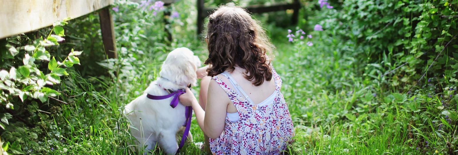5 redenen waarom een huisdier
